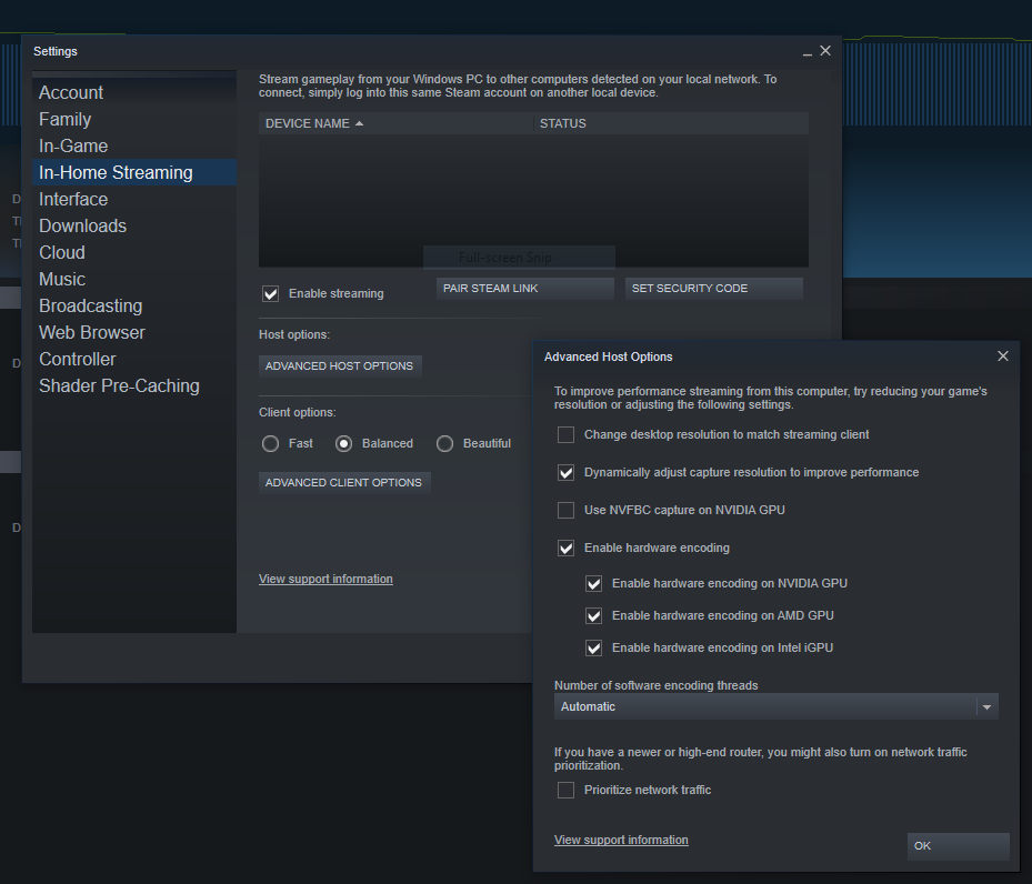 SteamLink Settings