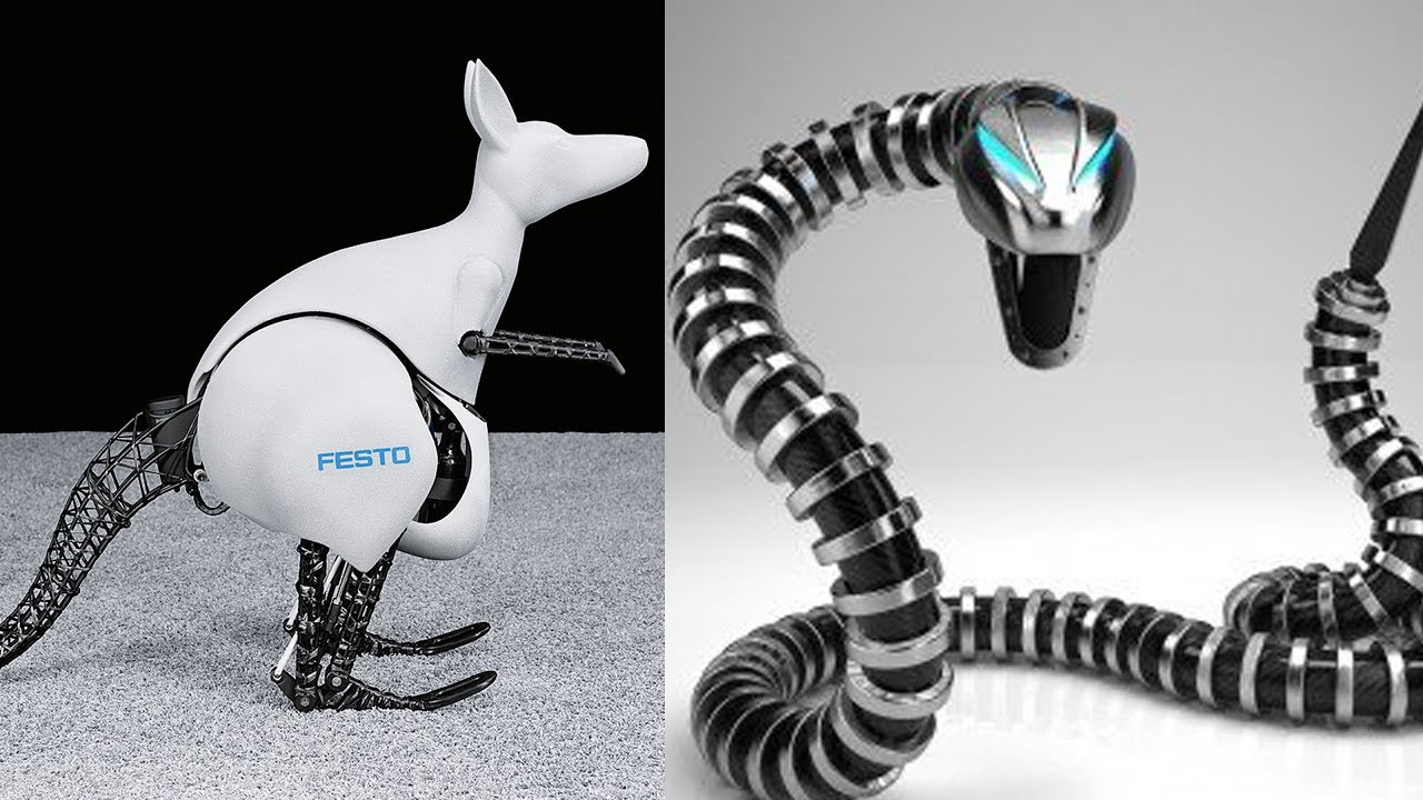 Robotic kangaroo and snake concepts